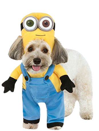 Yellow and blue officially licensed Minion Bob costume for dogs.