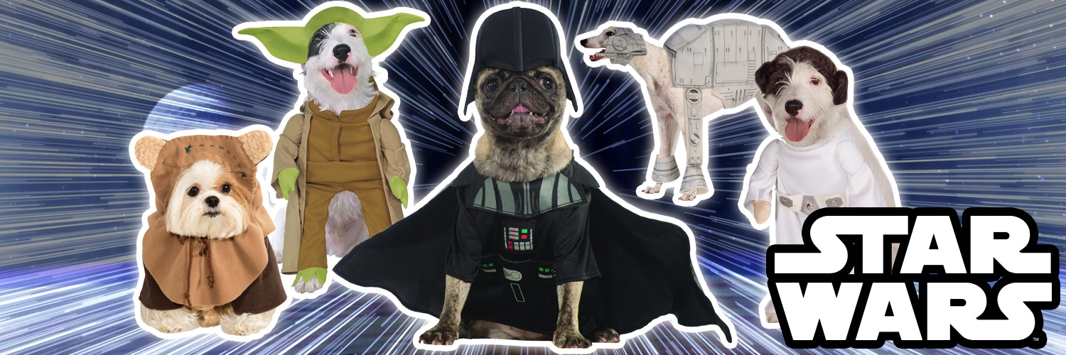 Fancydogs Star Wars