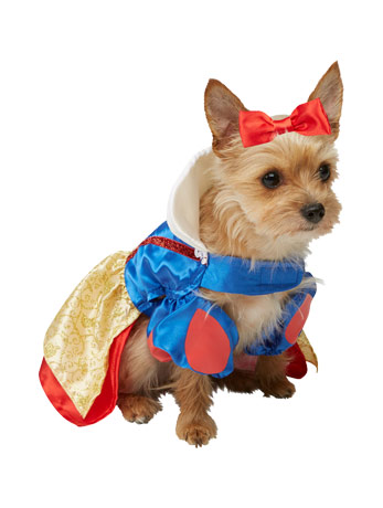 Blue, yellow and red Snow White fairytale costume for dogs.