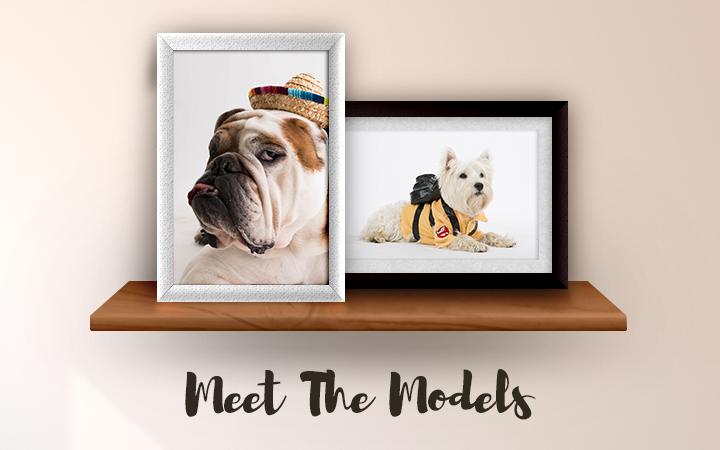models-banner-half