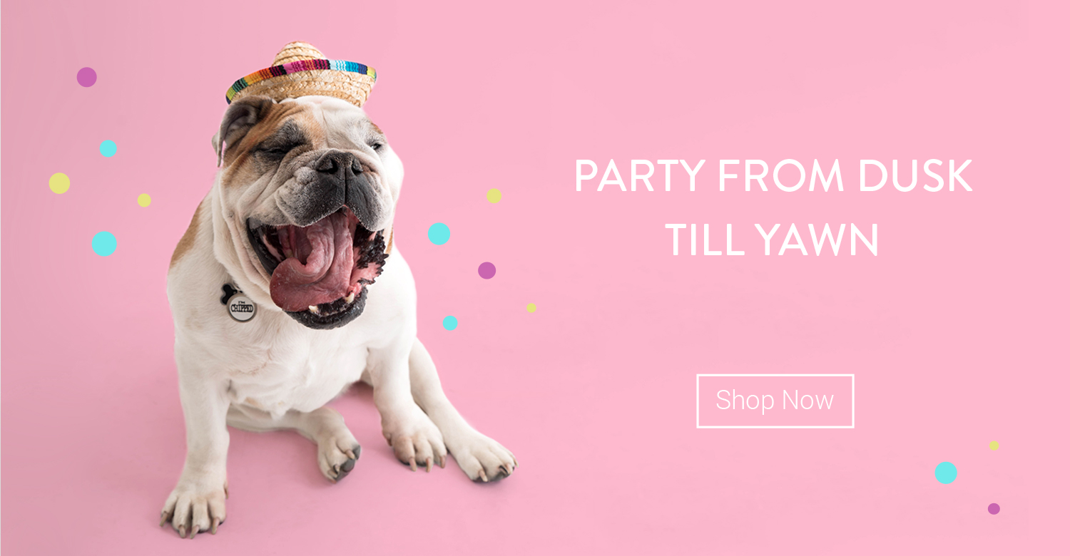 Fancydogs.co.uk - The UK home of fancy dress costumes for dogs