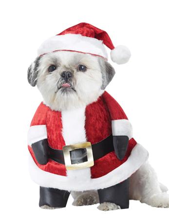 Christmas Dog Costumes.Santa Paws Christmas Dog Costume