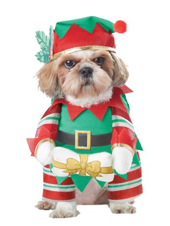Christmas Dog Costumes.Elf Pup Christmas Dog Costume