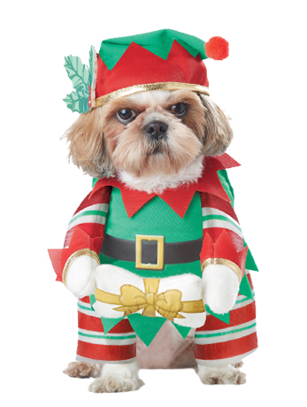 Elf Pup Christmas Dog Costume