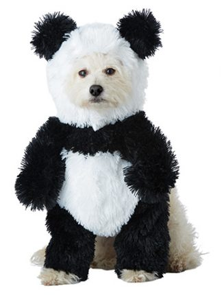 Fancydogscouk The Uk Home Of Fancy Dress Costumes For Dogs